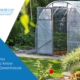 Greenhouse: everything you need to know